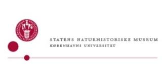 DJ til Statens naturhistoriske museum julefrokost