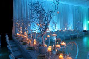 bryllups deco winter